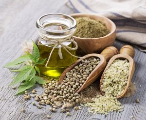 Healthy and nutritious hemp seed foods