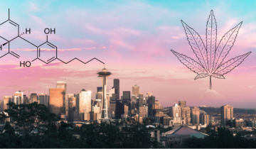 5 Ways to Buy CBD in Seattle (Which is best?)