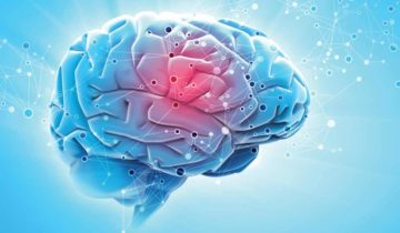 Omega-3 fats: Is your brain getting enough?